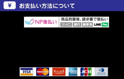about_paymentNP6